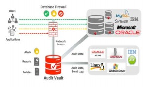 Vulnerabilidades importantes que afectan a la seguridad de base de datos