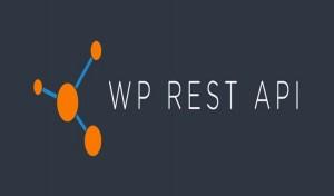 Claves para desarrollar con API REST